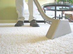 清洗地毯进行中